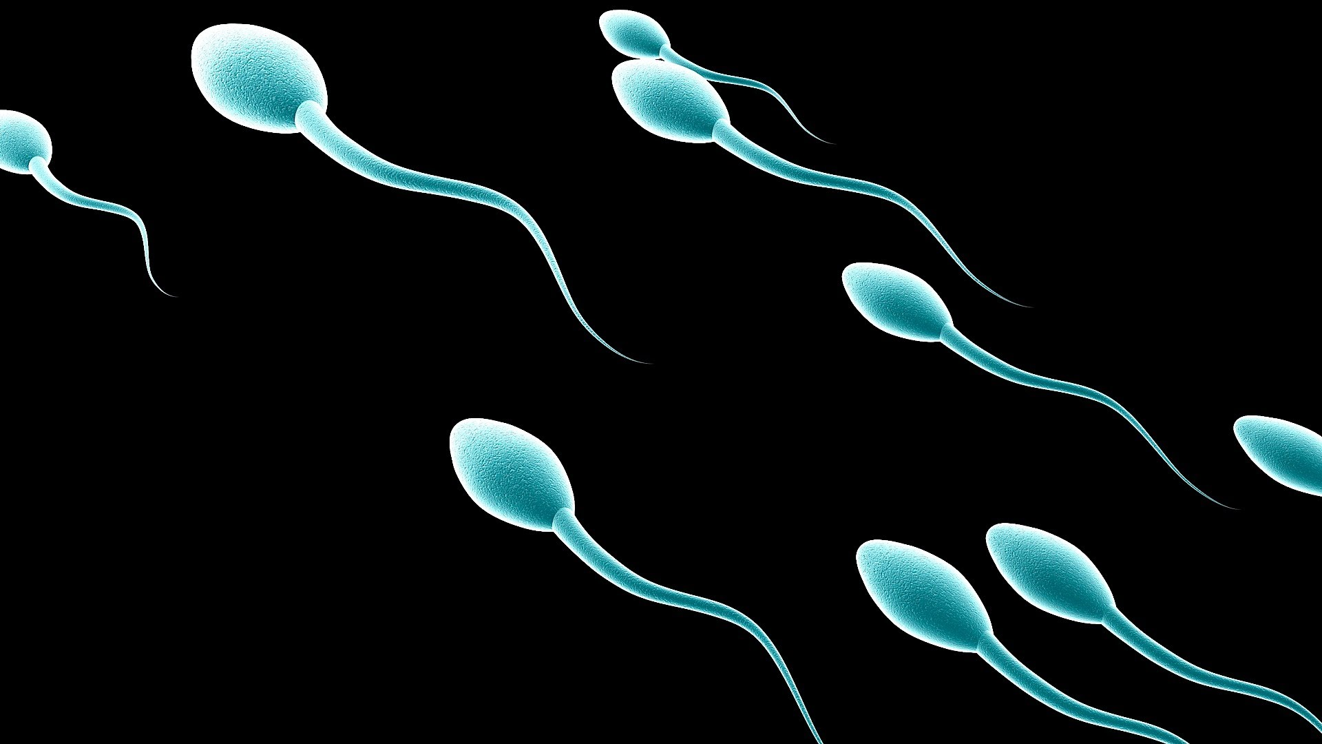 Natural Ways To Increase Sperm Count